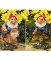 2x tuinkabouters rode muts op eekhoorn schildpad 21 cm